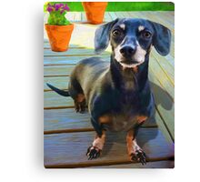 """""""Ruby At Home on The Deck"""" Canvas Print"""