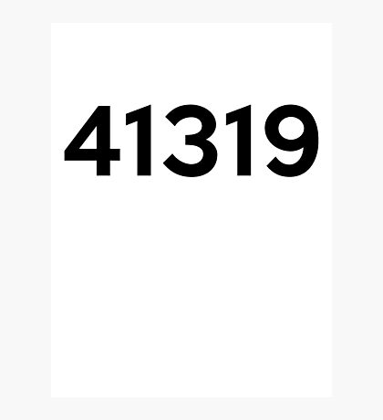 41319 Photographic Print