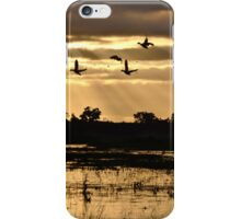 Swallows, Ducks and floods at Sunset iPhone Case/Skin