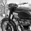 Triumph 650 by BRogers