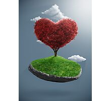 Heart tree on suspended rock Photographic Print