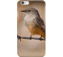 Say's Phoebe on a Barbed Wire iPhone Case/Skin