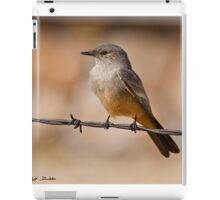 Say's Phoebe on a Barbed Wire iPad Case/Skin