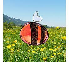 Orange Inky Bumble Bee Photographic Print