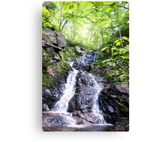 Relaxing Waterfall Canvas Print