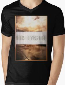 Birds Flying High Mens V-Neck T-Shirt