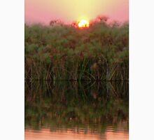 Sunset over the papyrus, Okavango Delta, Botswana Unisex T-Shirt