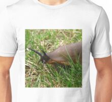 I'm Coming For Your Lettuces ! Unisex T-Shirt