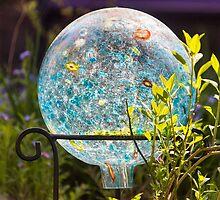 Garden Gaze by Tracy Riddell