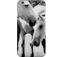Precious  Horses iPhone Case/Skin