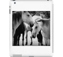Precious  Horses iPad Case/Skin