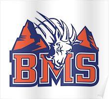 BMS Poster