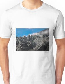 0187 Franz Josef Glacier up close Unisex T-Shirt