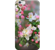 Blossom Bloom iPhone Case/Skin