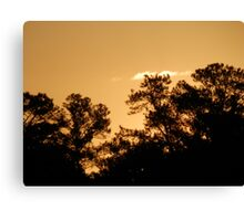 Silhouettes at sunrise Canvas Print