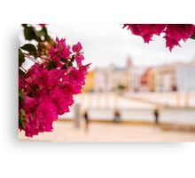 Seville - Flowers and Calle Betis Canvas Print