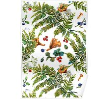 Forest ferns, berries and mushrooms Poster