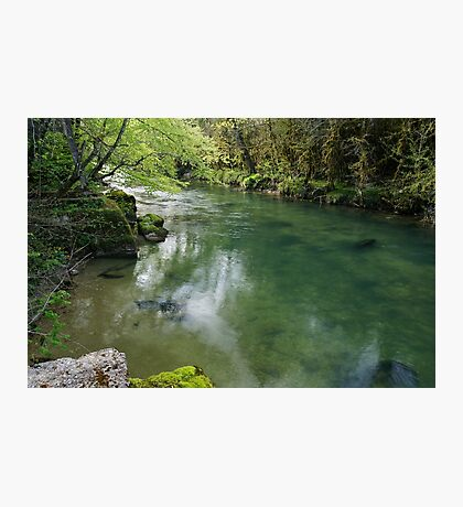 Springtime greenery along Semine river Photographic Print