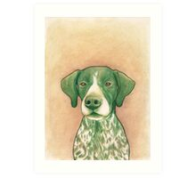 Jola #02 - German Short-Haired Pointer Art Print
