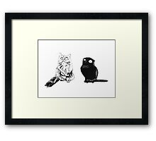 Cat buddies Framed Print