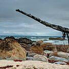 0096 Cape Conran  by DavidsArt