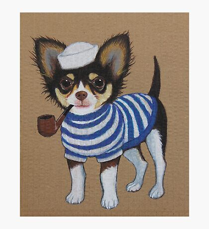 Sailor Chihuahua Photographic Print