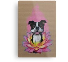 Zen Boston Terrier - Lotus Flower Metal Print