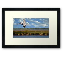 Pelican with Wind Turbines Framed Print