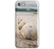 Shell on Lady Bay Beach Photograph Dumfries and Galloway iPhone Case/Skin
