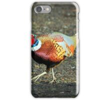 Dancing Pheasant iPhone Case/Skin