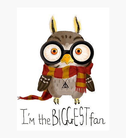 Small owlet - Biggest HP fan Photographic Print
