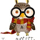 Small owlet - Biggest HP fan by Redilion