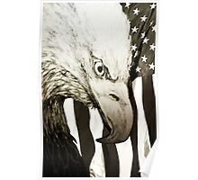 Nature's Stare With American Flag Poster