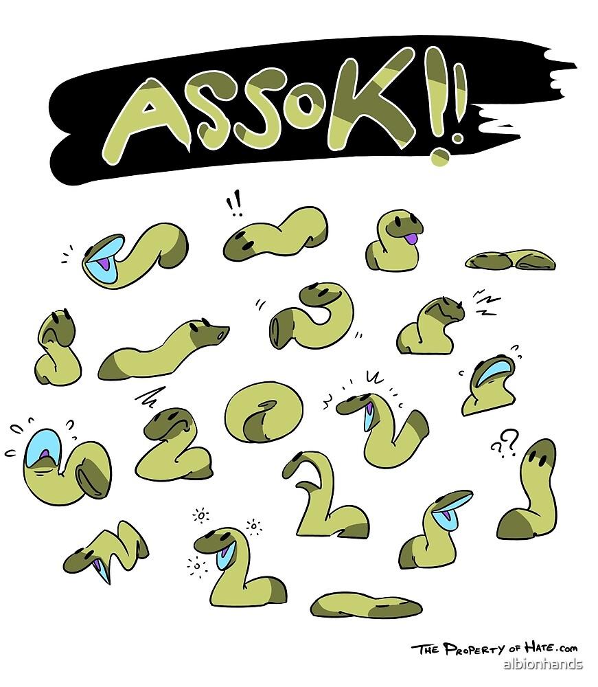 TPoH: Assok! by albionhands