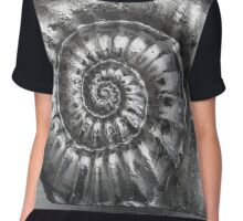 Ammonite Chiffon Top