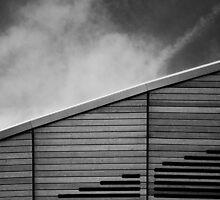 Lee Valley Velodrome #2 by David Hawkins-Weeks