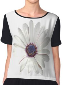 White Daisy Isolated On White Chiffon Top