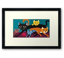 Cats & Kittens Framed Print