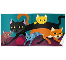 Cats & Kittens Poster