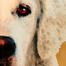 Golden Retriever Half Face by Sharon Cummings by Sharon Cummings