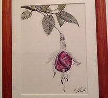 Fuchsia  by Marilyn Grimble