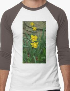 Garden Daffodils Men's Baseball ¾ T-Shirt
