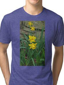 Garden Daffodils Tri-blend T-Shirt