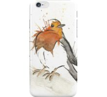 The Owl's Robins iPhone Case/Skin