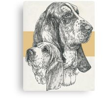 Basset Hound, Father & Son  Canvas Print