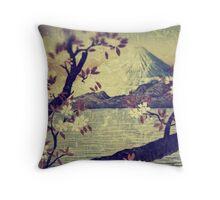 Templing at Hanuii Throw Pillow