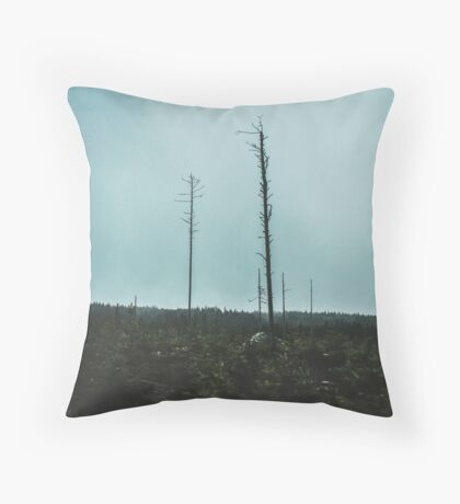 Desolate Trees Throw Pillow