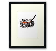 Robin Redbreast in Her Nest Illustration Framed Print
