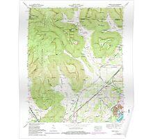 USGS TOPO Map Alabama doran cove al-tn histmap Poster