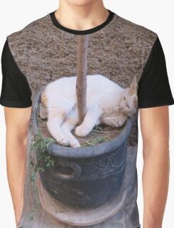 wrapped cat Graphic T-Shirt